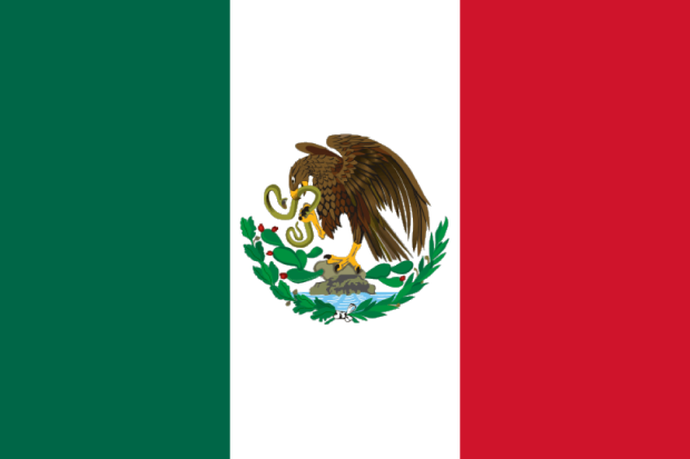 20060117062247flag_of_mexico_1917